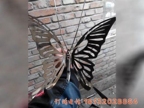 不锈钢抽象蝴蝶