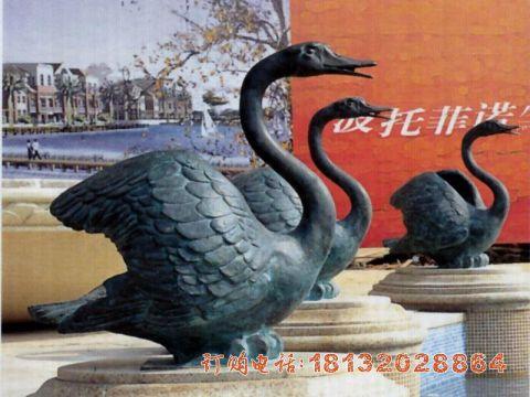 公园天鹅铜雕